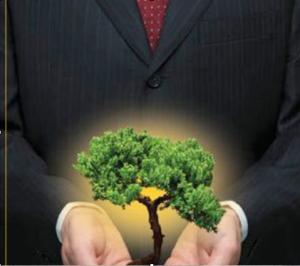 consultoria sustentabilidad
