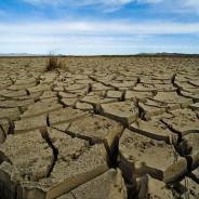Cambio Climático y Global en América Latina – Curso en línea