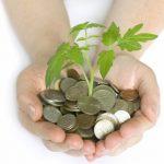 finanzas y ambiente