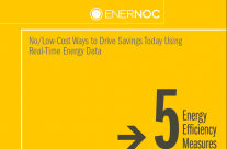 No/Low-Cost Ways to Drive Savings Today Using Real-Time Energy Data