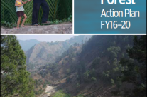 World Bank Group Forest Action Plan FY16–20